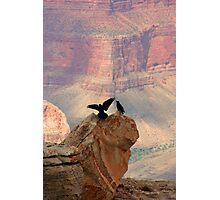 Grand Canyon Ravens Photographic Print