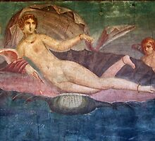 Naked Woman Venus on Clamshell Fresco Pompeii by TOM HILL - Designer