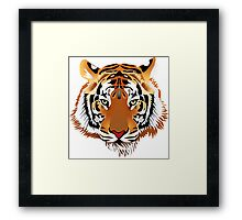 Tiger 578 Framed Print
