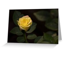 Blush of a New Day Greeting Card
