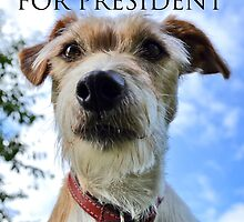 Doggy Elections 2014 by Paul Hickson
