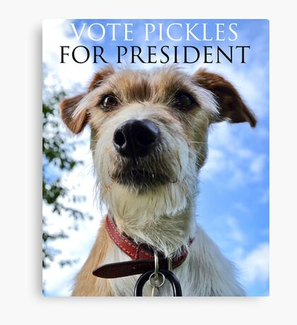 Doggy Elections 2014 Canvas Print