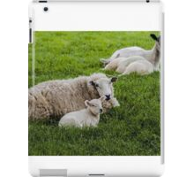 Ewe and Lamb iPad Case/Skin