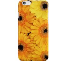 Blooming Gerbera Flowers and Petals - Yellow iPhone Case/Skin