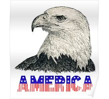 "Eagle ""America"" (stars & stripes) Poster"