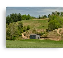 Kentucky Barn Quilt - Americana Star 2 Canvas Print