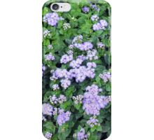 Natural bush with purple small flowers. iPhone Case/Skin