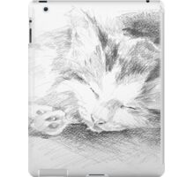 Sleepy Kitten iPad Case/Skin