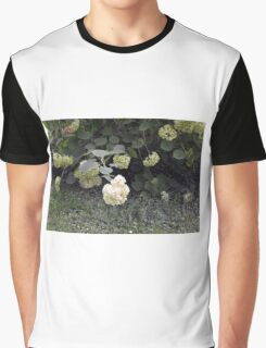 White flowers part of natural bush in the garden. Graphic T-Shirt