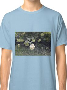White flowers part of natural bush in the garden. Classic T-Shirt