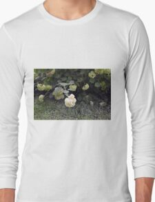 White flowers part of natural bush in the garden. Long Sleeve T-Shirt