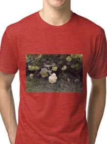 White flowers part of natural bush in the garden. Tri-blend T-Shirt