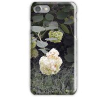 White flowers part of natural bush in the garden. iPhone Case/Skin