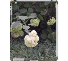 White flowers part of natural bush in the garden. iPad Case/Skin