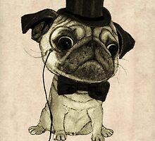 Pug; gentle pug. by barruf
