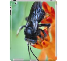 Black Bumble iPad Case/Skin