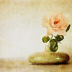 Vintage Rose - JUSTART © by JUSTART