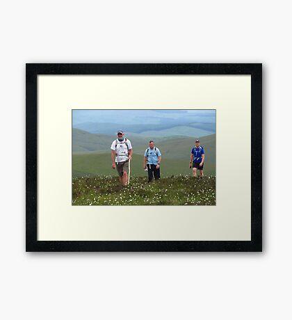 Darn Cotton Grass & Moorland Bog Framed Print