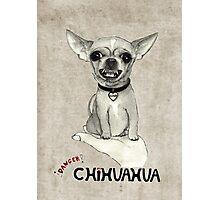 Danger, chihuahua. Photographic Print