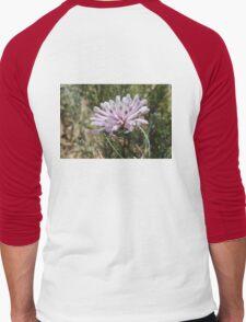 Pixie Mop Wildflower Men's Baseball ¾ T-Shirt