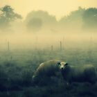 Dreaming of Sheep - JUSTART © by JUSTART