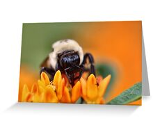 Fuzzy Bee Greeting Card