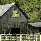 Kentucky Barn Quilt - 3 by mcstory