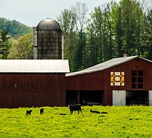 Kentucky Barn Quilt - 1 by mcstory