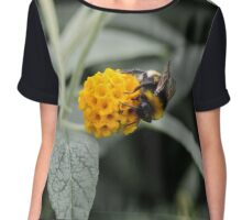 Bee time Chiffon Top