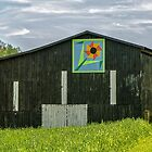 Kentucky Barn Quilt - Flower of Friendship by mcstory