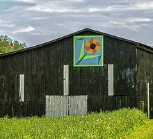 Kentucky Barn Quilt - Flower of Friendship by mcstory