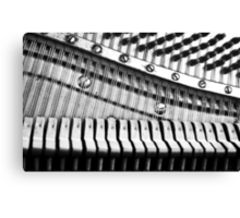 Piano Strings, Hammers & Pegs Canvas Print