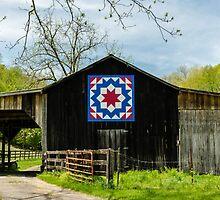 Kentucky Barn Quilt - Carpenters Wheel by mcstory