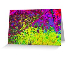 Colors ~ Filters & Light Greeting Card