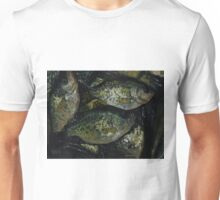 A Crappie Day Unisex T-Shirt