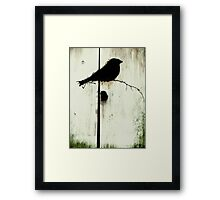 Early Bird  - JUSTART ©  Framed Print