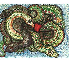 Snakeknot Photographic Print
