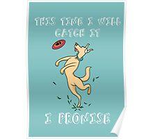 Dog Fetch Poster