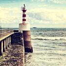 Amble Pier Lighthouse by Vicki Field