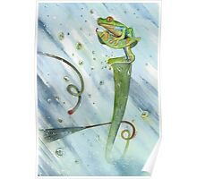 Madagascan Tree Frog on Pitcher Plant With Raindrops Poster