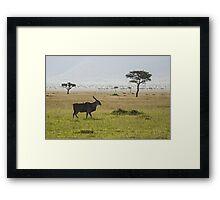 Eland in Masai Mara Framed Print