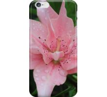 Pink Lily - Asiatic Lily ?? iPhone Case/Skin