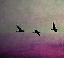 Goose Flight  - JUSTART ©  by JUSTART