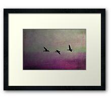 Goose Flight  - JUSTART ©  Framed Print