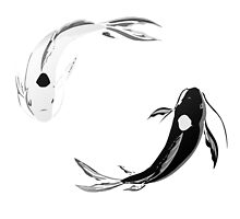 Yin Yang Koi - Avatar by willcc