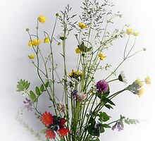 Wildflower Bouquet by Martha Medford