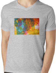 colour two Mens V-Neck T-Shirt