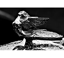 Hood Ornament - 1932 Plymouth - B&W Photographic Print