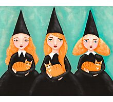 Ginger Witches & Ginger Cats Photographic Print