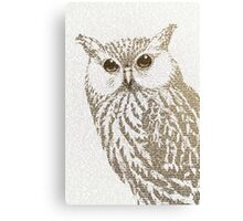The Intellectual Owl Canvas Print